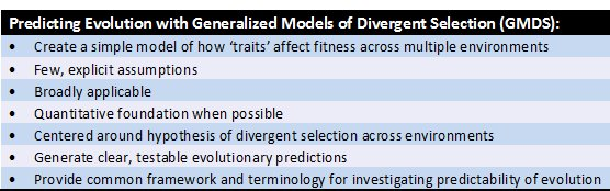 Generalized Models of Divergent Selection